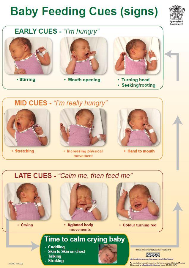 baby-cues